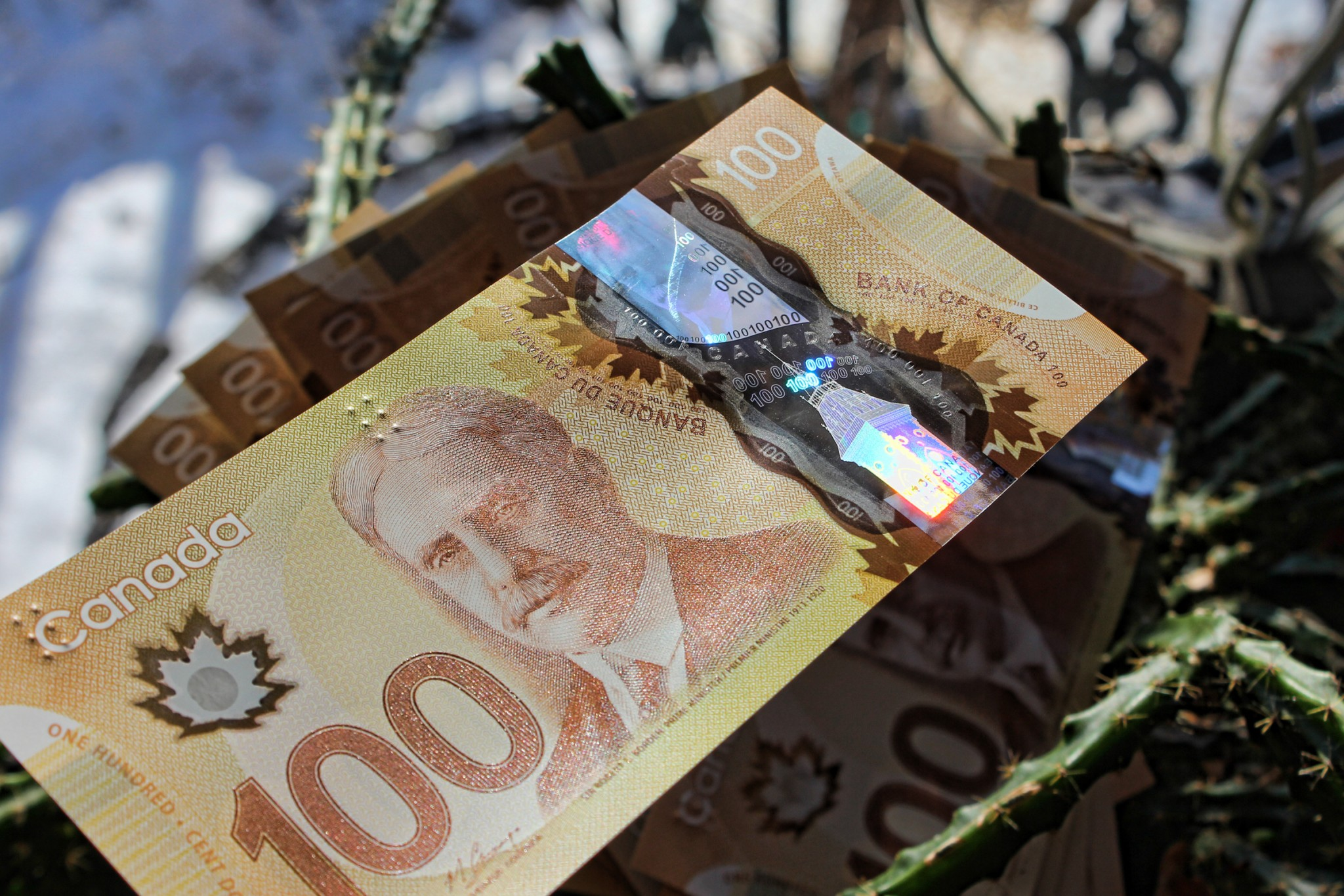 One Canada's newest $100 bills. - Photo by Di Bedard/ Flickr Creative Commons