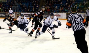 Referee Kevin Bennett watches the puck and players at a Kamloops Blazers game (Tayla Scott/ The Omega)