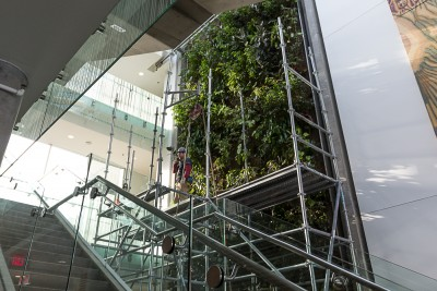 The House of Learning's living wall was somewhat of a centrepiece for the building. (Sean Brady/The Omega)