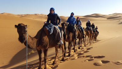 Nolan Chapman, second from the front in a blue hoodie, riding a camel in the Sahara.